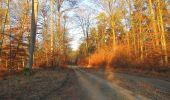 Trail Walk SAINT-JEAN-AUX-BOIS - en forêt de Compiègne_33_12_2019_les Tournantes de l'étang Saint-Jean et des Prés Saint-Jean - Photo 196