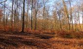 Trail Walk PIERREFONDS - en forêt de Compiègne_24_Tournantes sur le Voliard et sur la Fortelle_chaussée Brunehaut - Photo 39