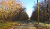 Trail Walk SAINT-JEAN-AUX-BOIS - en forêt de Compiègne_33_12_2019_les Tournantes de l'étang Saint-Jean et des Prés Saint-Jean - Photo 13