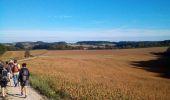 Randonnée Marche FERRIERES-LES-BOIS - Ferrières les bois - Photo 13