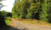 Randonnée Marche LACROIX-SAINT-OUEN - en forêt de Compiègne_35_la Croix Saint-Sauveur_le Ru du Goderu - Photo 30