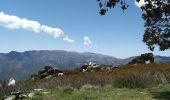 Randonnée Marche CAMPILE - Boucle de Monte Castellare - Photo 3