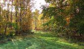 Randonnée Marche SAINT-JEAN-AUX-BOIS - en forêt de Compiègne_32_11_2019_les Tournantes de la Muette et sous la Tête Saint-Jean - Photo 132