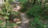 Randonnée Marche PINEY - MdP 22,5km le 14/08/2020 - Photo 2