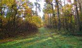 Randonnée Marche SAINT-JEAN-AUX-BOIS - en forêt de Compiègne_19_le Puits d'Antin_les Mares St-Louis_La Muette - Photo 42