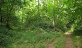 Randonnée Marche SAINT-JEAN-AUX-BOIS - en forêt de Compiègne_2_ruines gallo-romaines de Champlieu_les Petits Monts - Photo 134