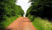 Randonnée Marche COYOLLES - en forêt de Retz_78_les rayons du Rond Capitaine - Photo 111