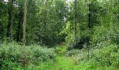 Randonnée Marche LONGPONT - en foret de Retz_ 41_Longpont_Vertes Feuilles_AR - Photo 163