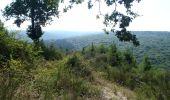Randonnée Marche Wellin - RB-Lu-25_Jour 2_Au pays de Wellin-porte de l'Ardenne - Photo 2