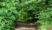 Randonnée Marche HARAMONT - en forêt de Retz_79_08_2019_vers Taillefontaine et Retheuil par les lisières - Photo 88