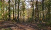 Randonnée Marche LONGPONT - en forêt de Retz_77_Longpont_Puiseux en Retz_AR - Photo 142