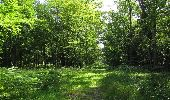 Randonnée Marche LACROIX-SAINT-OUEN - en forêt de Compiègne_35_la Croix Saint-Sauveur_le Ru du Goderu - Photo 101