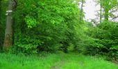 Randonnée Marche COYOLLES - en forêt de Retz_78_les rayons du Rond Capitaine - Photo 9