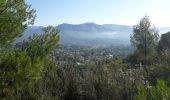 Randonnée Marche ROQUEVAIRE - Garlaban au départ de Lascours  - Photo 6