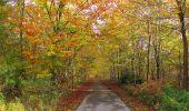 Randonnée Marche SAINT-JEAN-AUX-BOIS - en forêt de Compiègne_32_11_2019_les Tournantes de la Muette et sous la Tête Saint-Jean - Photo 130