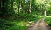 Randonnée Marche HARAMONT - en forêt de Retz_79_08_2019_vers Taillefontaine et Retheuil par les lisières - Photo 69