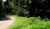 Randonnée Marche HARAMONT - en forêt de Retz_79_08_2019_vers Taillefontaine et Retheuil par les lisières - Photo 53