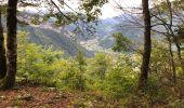 Trail Walk THONES - Les Glières depuis le Crêt - Photo 10