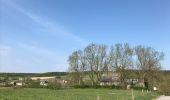 Randonnée Marche Rochefort - Croix du chariot vers Chapelle reine Astrid  - Photo 11