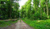 Randonnée Marche COYOLLES - en forêt de Retz_78_les rayons du Rond Capitaine - Photo 54
