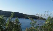 Randonnée Marche LES ANSES-D'ARLET - cap salomon - Photo 12