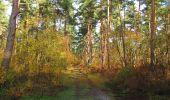 Randonnée Marche SAINT-JEAN-AUX-BOIS - en forêt de Compiègne_32_11_2019_les Tournantes de la Muette et sous la Tête Saint-Jean - Photo 106