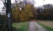 Trail Walk SENTHEIM - Sentheimtour Covid série 2 bis - Photo 4