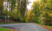 Randonnée Marche SAINT-JEAN-AUX-BOIS - en forêt de Compiègne_32_11_2019_les Tournantes de la Muette et sous la Tête Saint-Jean - Photo 154