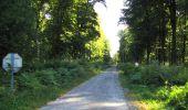 Trail Walk DAMPLEUX - en forêt de Retz_80_sur la Route Tortue et la Route Droite - Photo 140