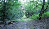 Trail Walk DAMPLEUX - en forêt de Retz_80_sur la Route Tortue et la Route Droite - Photo 33
