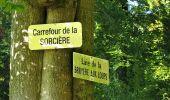 Trail Walk DAMPLEUX - en forêt de Retz_80_sur la Route Tortue et la Route Droite - Photo 114
