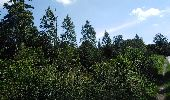 Randonnée Marche Dalhem - dalhem grand tour - Photo 24