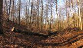 Trail Walk PIERREFONDS - en forêt de Compiègne_24_Tournantes sur le Voliard et sur la Fortelle_chaussée Brunehaut - Photo 34