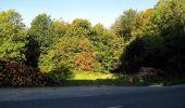 Trail Walk DAMPLEUX - en forêt de Retz_80_sur la Route Tortue et la Route Droite - Photo 36