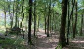 Randonnée Marche Profondeville - Sept Meuse Profondeville  21,4 km - Photo 4