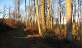Trail Walk PIERREFONDS - en forêt de Compiègne_24_Tournantes sur le Voliard et sur la Fortelle_chaussée Brunehaut - Photo 107