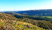 Trail Walk Viroinval - Le Tienne aux Pauquis et la Roche à Lomme - Photo 5