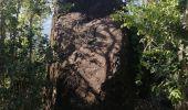Randonnée Marche LES ANSES-D'ARLET - cap salomon - Photo 6