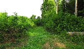 Randonnée Marche COYOLLES - en forêt de Retz_78_les rayons du Rond Capitaine - Photo 76