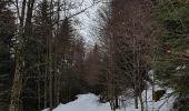 Randonnée Raquettes à neige GERARDMER - herardmer 1 - Photo 2