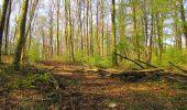 Randonnée Marche LONGPONT - en forêt de Retz_77_Longpont_Puiseux en Retz_AR - Photo 131