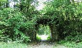 Trail Walk DAMPLEUX - en forêt de Retz_80_sur la Route Tortue et la Route Droite - Photo 15