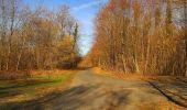 Trail On foot VIEUX-MOULIN - en forêt de Compiègne_23_la Grotte des Ramoneurs_le Mont Berny - Photo 73