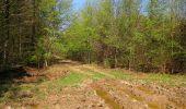 Randonnée Marche LONGPONT - en forêt de Retz_77_Longpont_Puiseux en Retz_AR - Photo 5