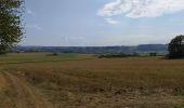 Randonnée Marche Tellin - repérage zero carbone 16092020 - Photo 1