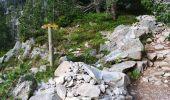 Trail Walk ARAGNOUET - les lacs - Photo 15