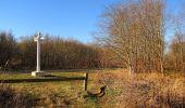 Trail Walk PIERREFONDS - en forêt de Compiègne_24_Tournantes sur le Voliard et sur la Fortelle_chaussée Brunehaut - Photo 8