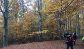 Trail Walk CRUIS - Jas Neuf, Jas pierrefeu et Jas Roche - Photo 4