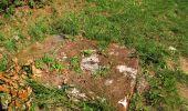 Randonnée A pied VILLERS-COTTERETS - le GR11A  dans la Forêt de Retz  - Photo 38