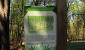 Randonnée Marche LONGPONT - en forêt de Retz_77_Longpont_Puiseux en Retz_AR - Photo 29
